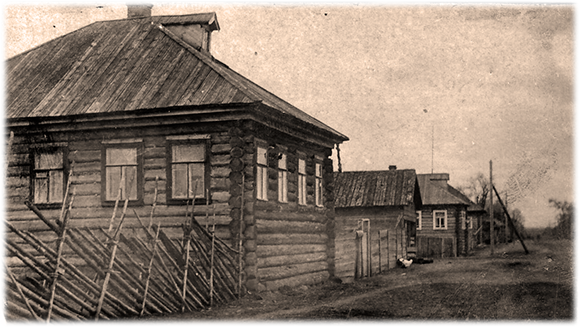Новые четырёхскатные дома в Пудоже